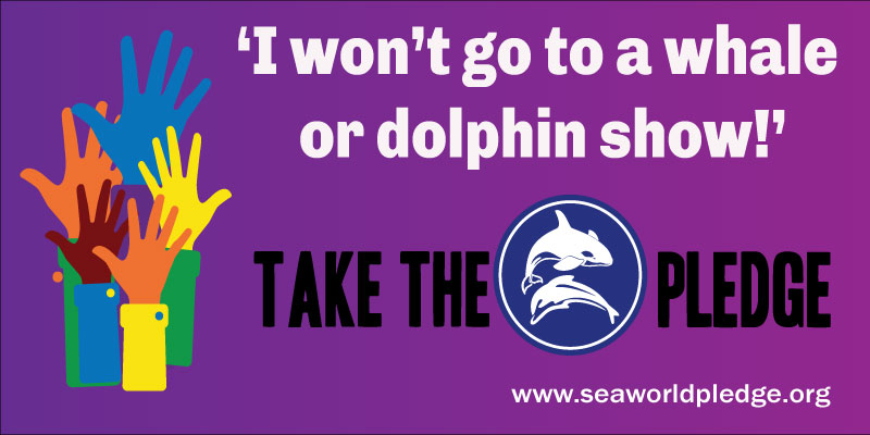 I-wont-go-to-a-whale-or-dolphin-show-take-the-seaworld-pledge