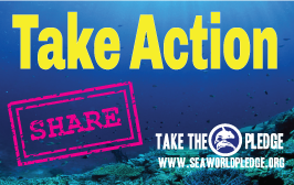 take-action-and-share-to-stop-seaworld
