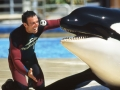hargrove_ex_seaworld_trainer_teams_up_with_ny_sen_greg_ball