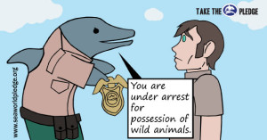 Indie comic book artist creates Comic strip for Seaworld Pledge
